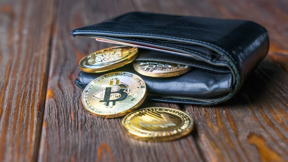 can one wallet hold multiple cryptocurrencies