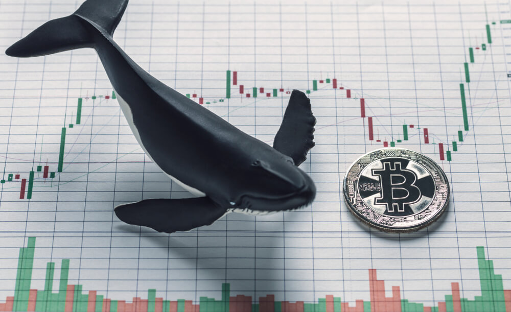 how to spot a cryptocurrency whale