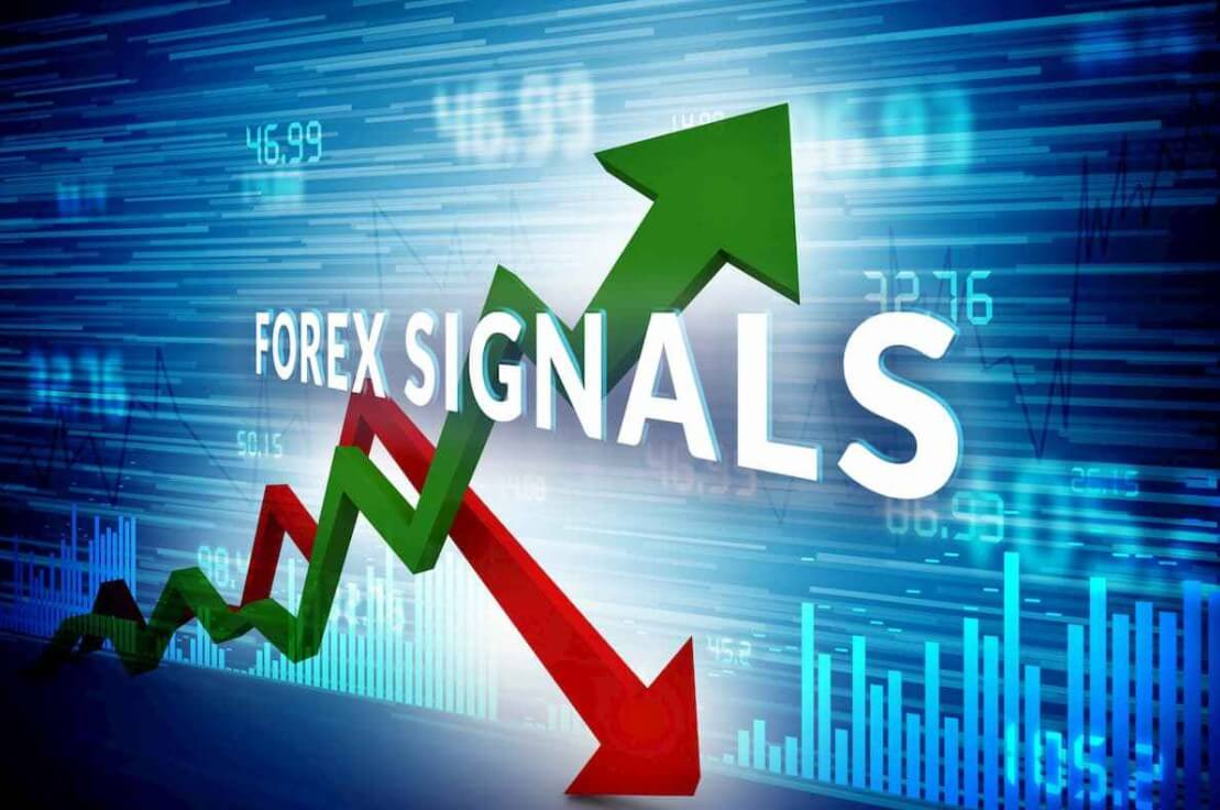 Image result for forex signal